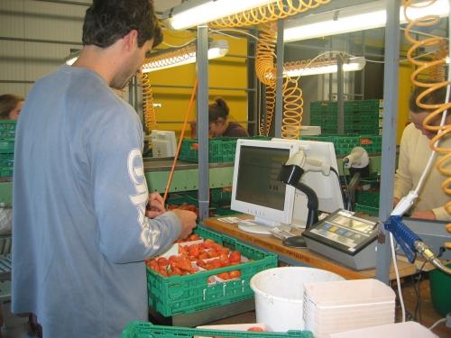 Agrikultur Qualitätsmanagement